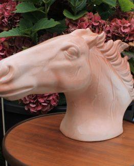 paardenhoofd (1)